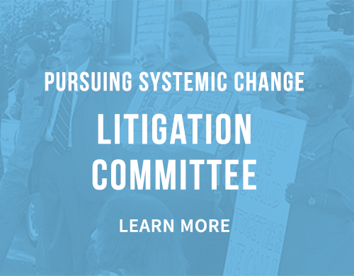 Learn more about our Litigation Committee
